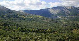 Excursión al monte Abantos. Domingo 9 de octubre.